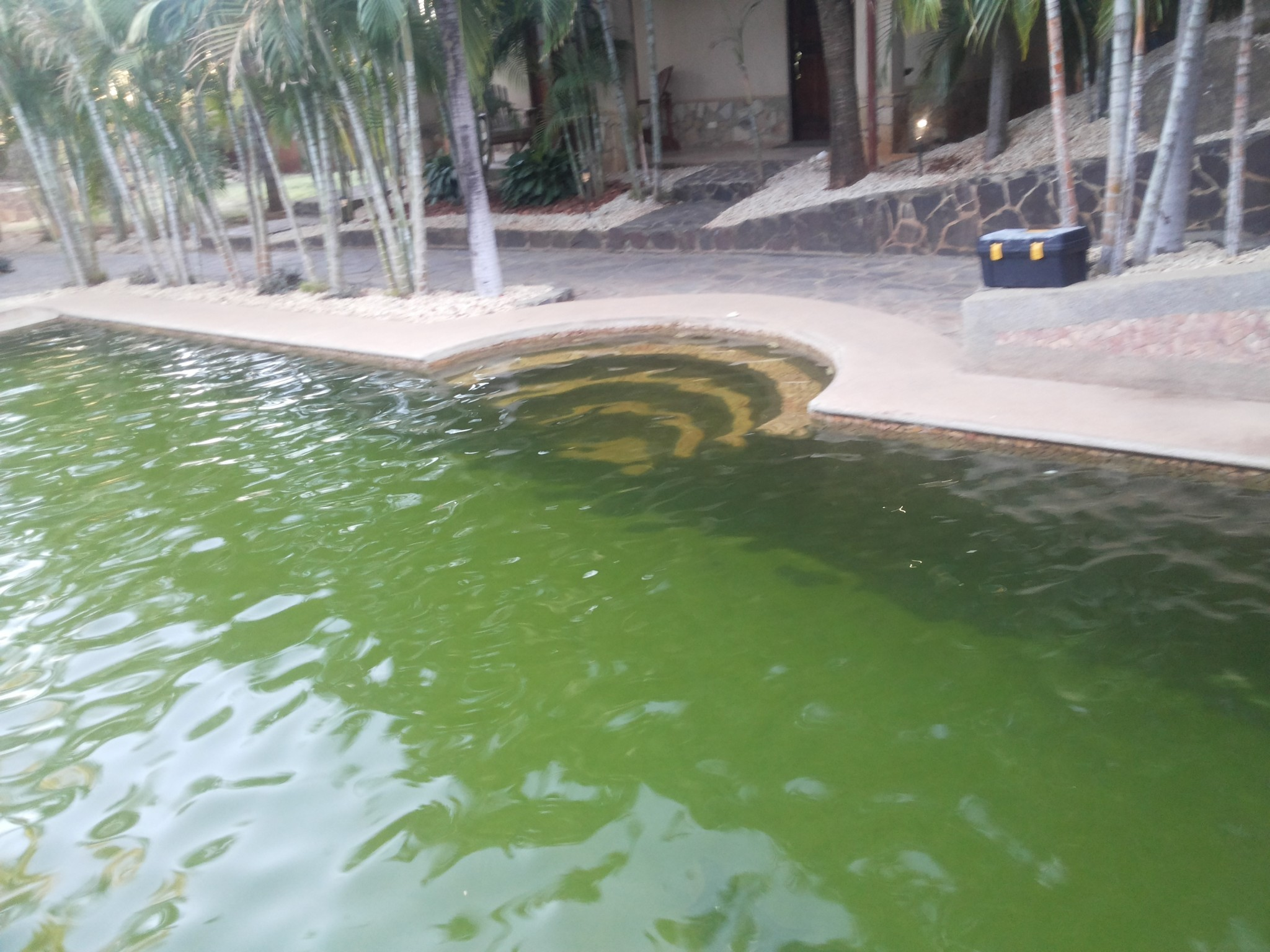 Limpiar agua verde piscina interesting piscinas with for Como aclarar agua piscina