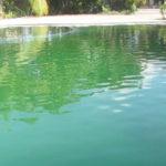 Piscinas Verdes