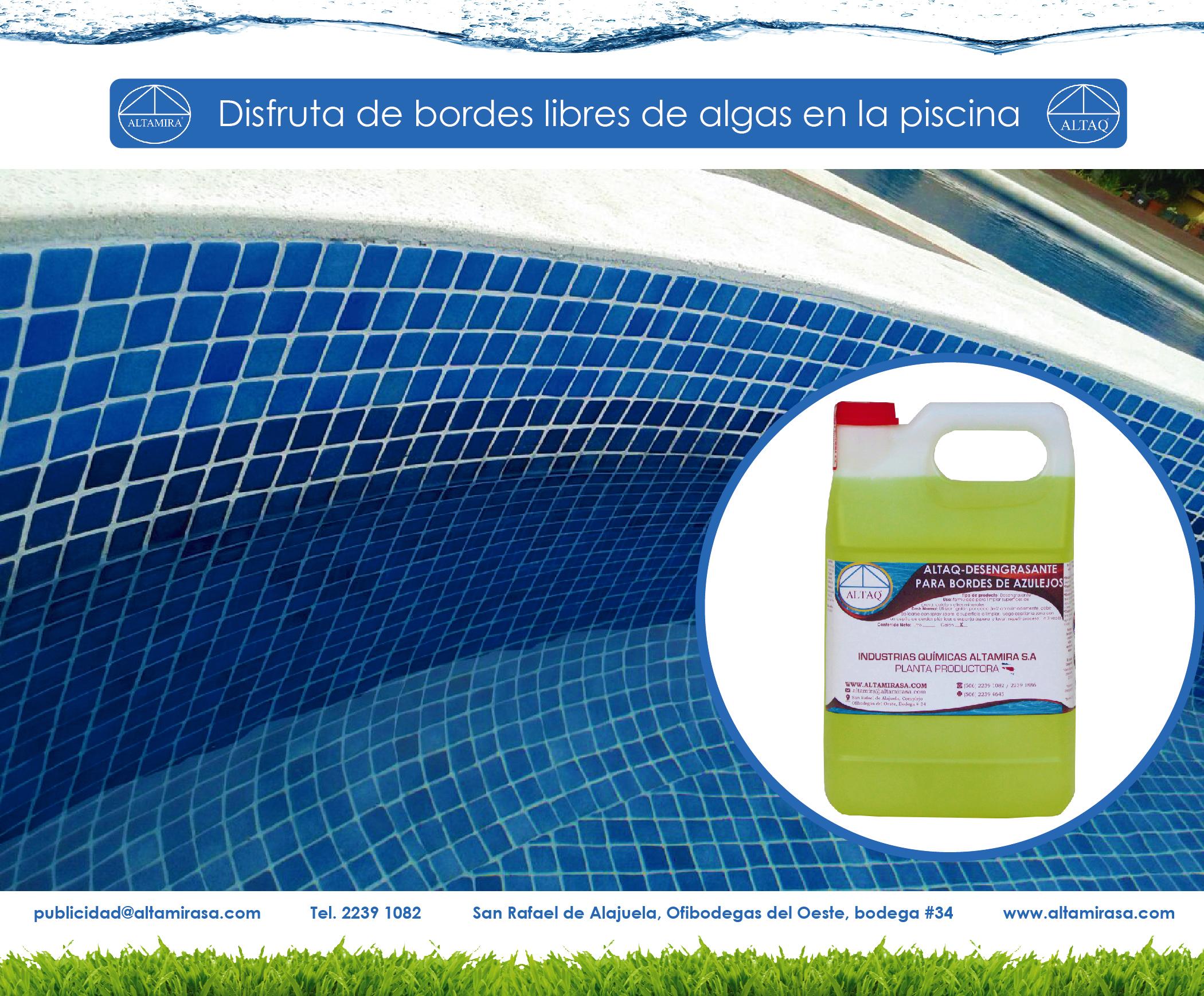 ¿Cómo arrancamos la suciedad de los azulejos de la piscina?
